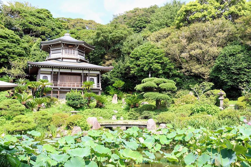 鎌倉・光明寺の大聖閣
