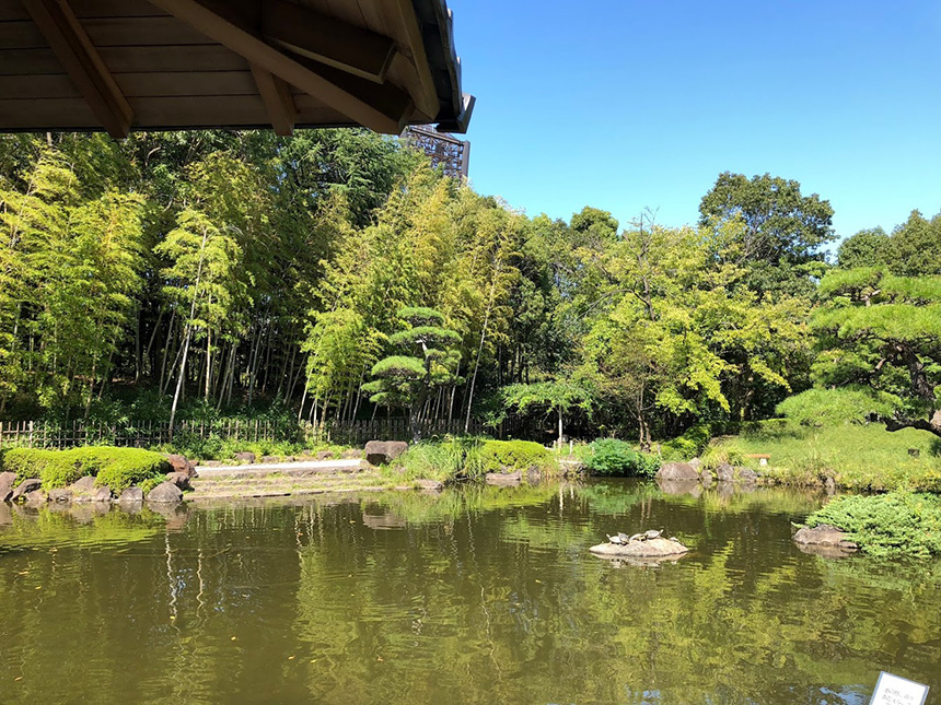平塚総合公園内の庭園