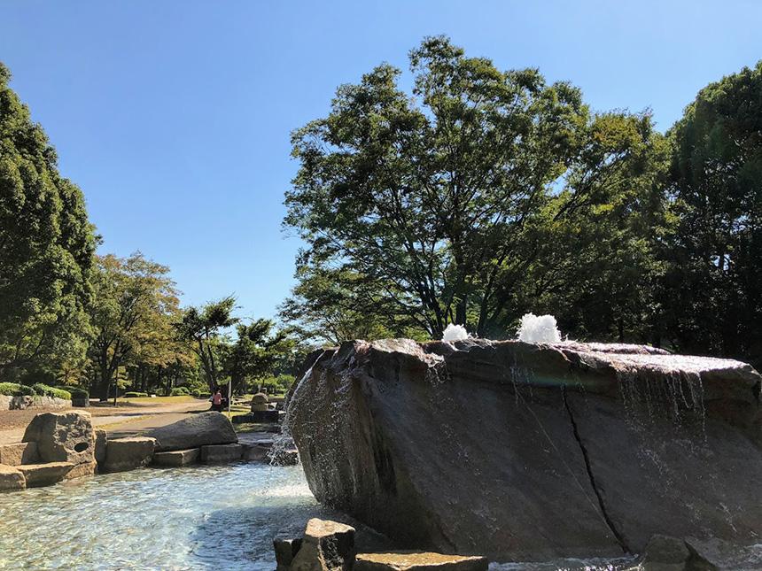 平塚総合公園の池で水遊び