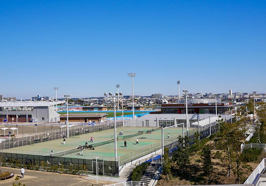 柳島スポーツ公園の運動施設、子どもの遊び場