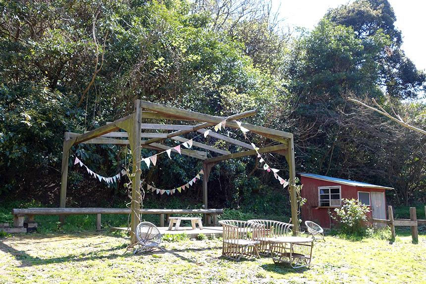 農家レストラン『SYOKU-YABO農園』の農園内
