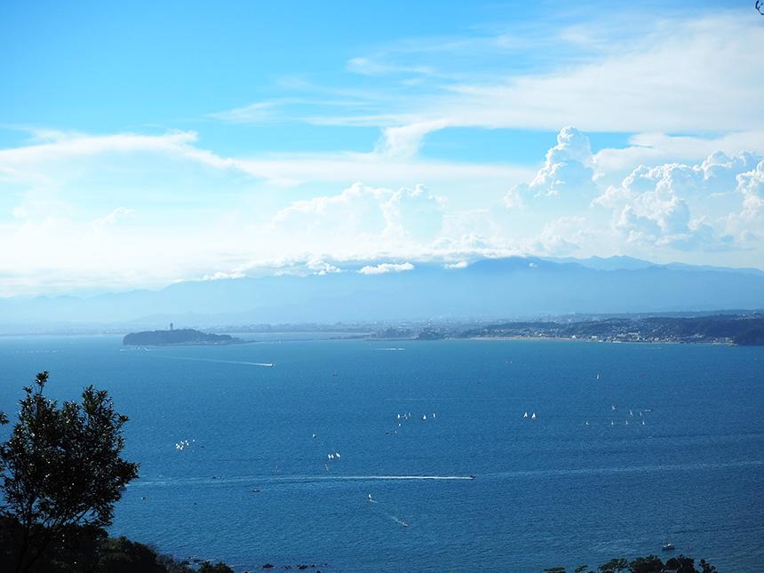 はやま三ヶ岡山緑地から眺める湘南の海