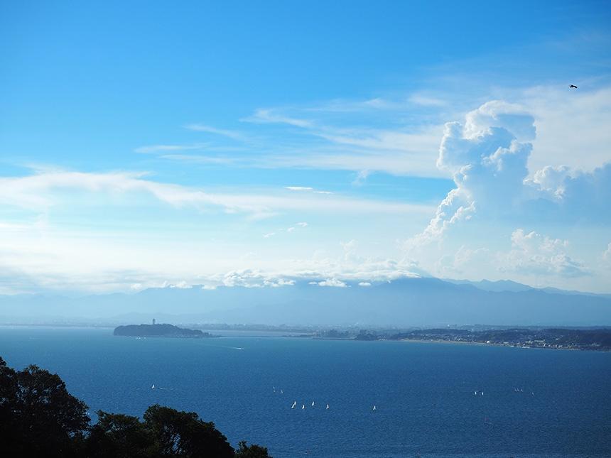はやま三ヶ岡山緑地の展望デッキから眺める湘南