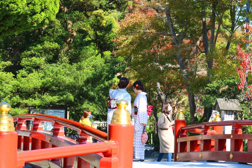 鎌倉観光『鶴岡八幡宮』の参拝客