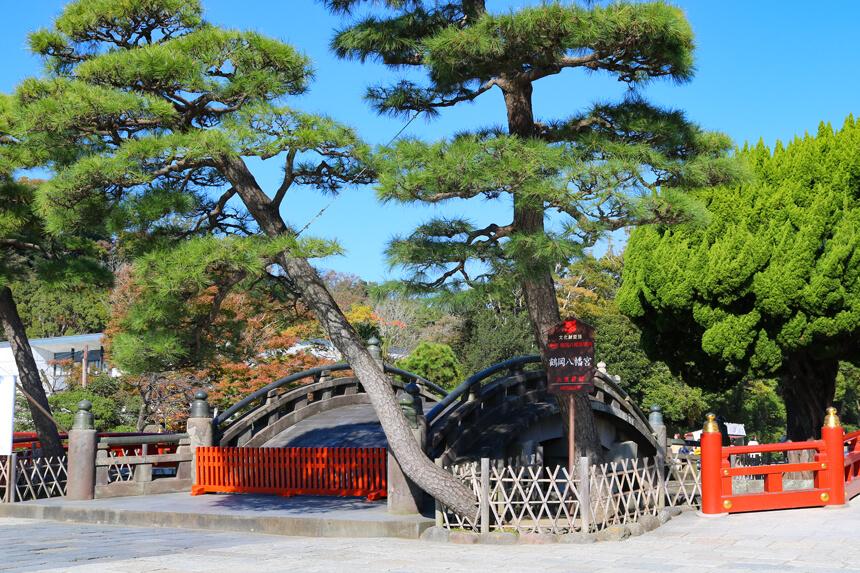 鎌倉観光『鶴岡八幡宮』の太鼓橋