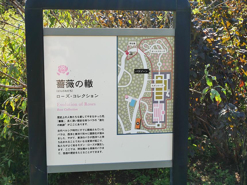 湘南・平塚の植物園『花菜ガーデン』の薔薇の轍看板