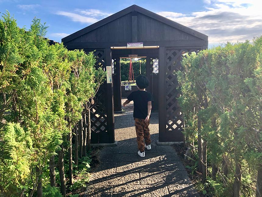 湘南・平塚の植物園『花菜ガーデン』のアグリゾーン