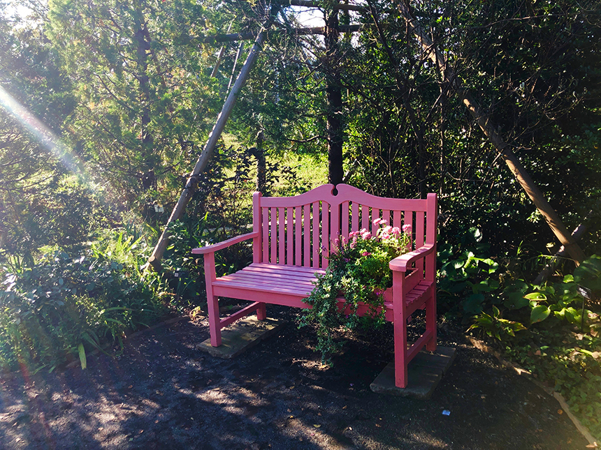 湘南・平塚の植物園『花菜ガーデン』の庭の椅子