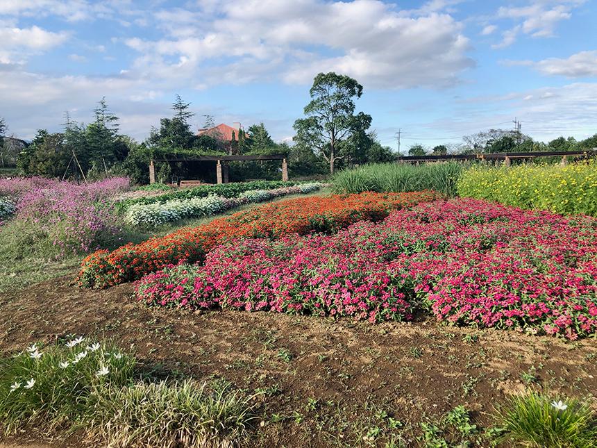 湘南・平塚の植物園『花菜ガーデン』のキッズファーム