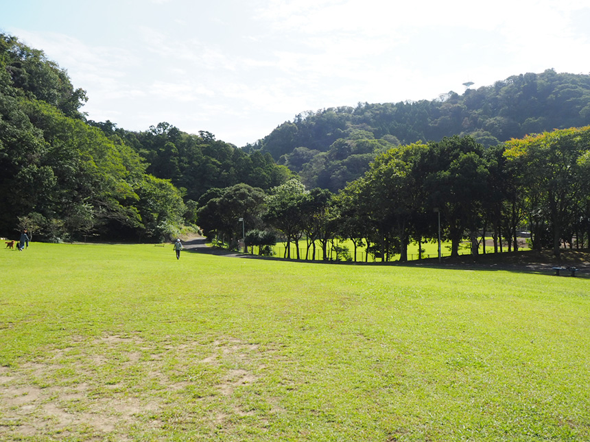 葉山『南郷上ノ山公園』でピクニック
