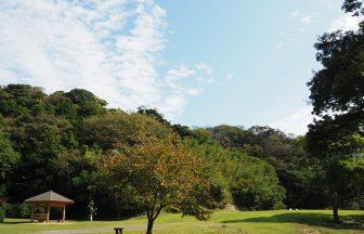 葉山『南郷上ノ山公園』の芝生広場