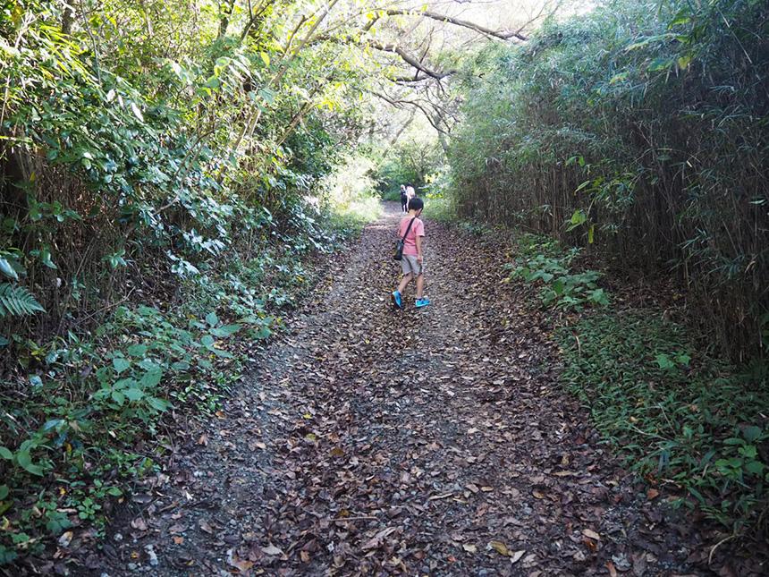 葉山『南郷上ノ山公園』のハイキングコースを歩く子ども