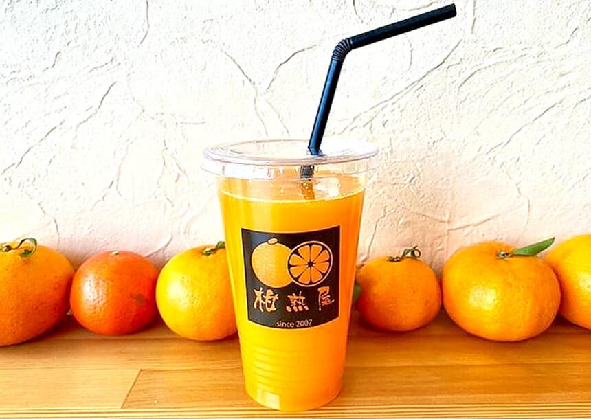 湘南のテイクアウトドリンク:辻堂「柑熟屋(かんじゅくや)」のみかんジュース