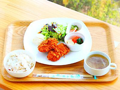 平塚『湘南平』レストランの「三崎まぐろカツランチ」