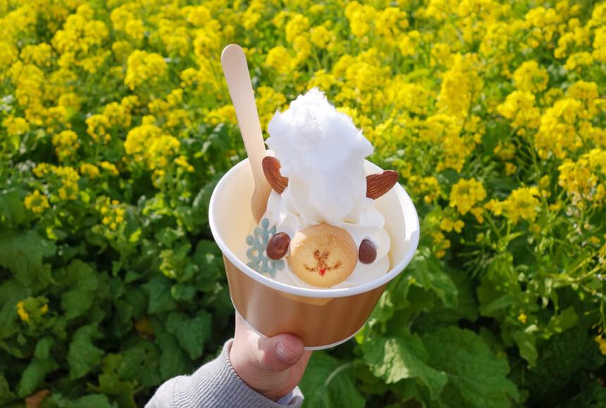 『長井海の手公園 ソレイユの丘』のアルパカソフトクリーム