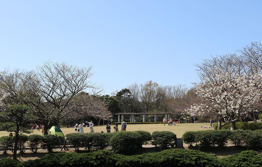 湘南藤沢・長久保公園の遊び場