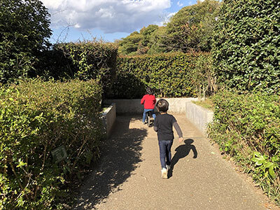 湘南藤沢・長久保公園の生垣の迷路で遊ぶ子ども