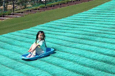 湘南・辻堂海浜公園の芝そりで遊ぶ子ども