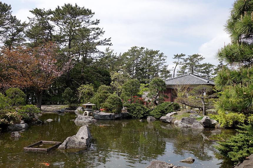 葉山しおさい公園の日本庭園と池