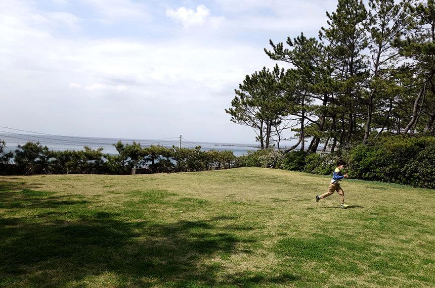 葉山しおさい公園の芝生広場