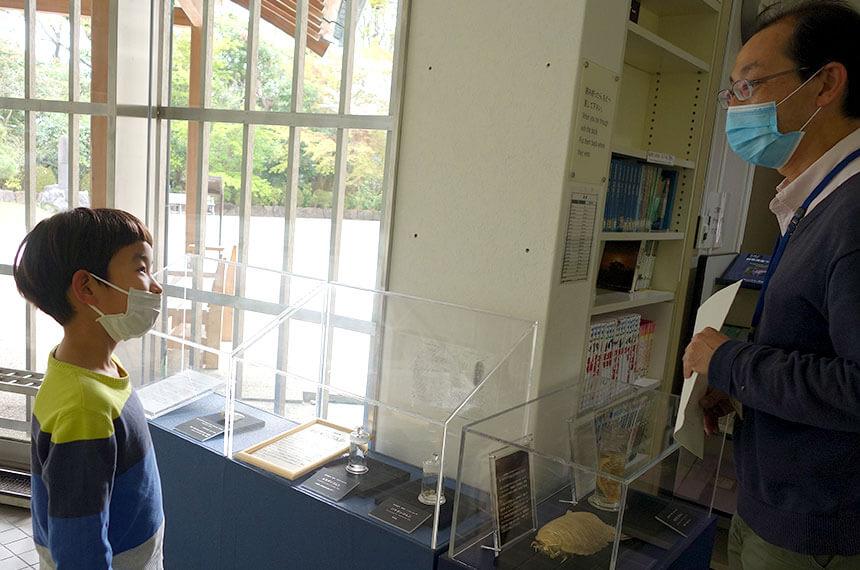 葉山しおさい博物館で海洋生物の説明を聞く子ども
