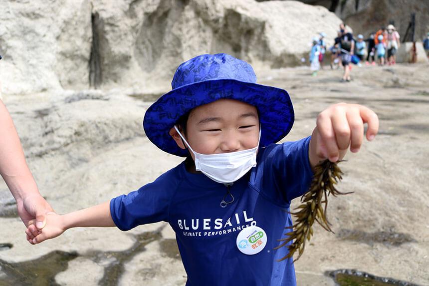 湘南・江ノ島の岩場で海草を見つけた子ども