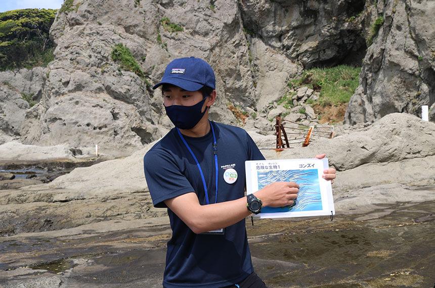 湘南・江ノ島の『海岸生物観察会』リーダーの説明