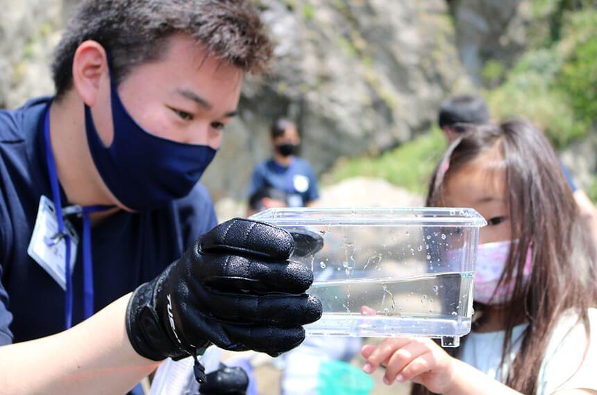 湘南・江ノ島の『海岸生物観察会』に参加する子ども