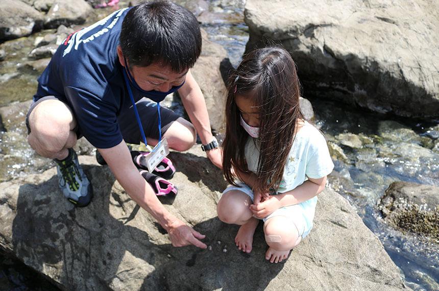 湘南・江ノ島『海岸生物観察会』で海の生き物観察する子ども
