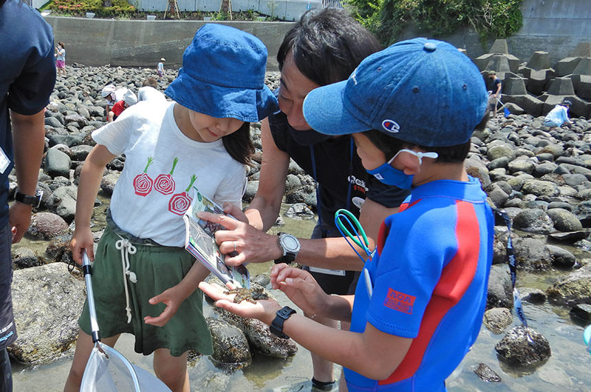 鎌倉「海と自然の教室」で海の生物について教わる子ども