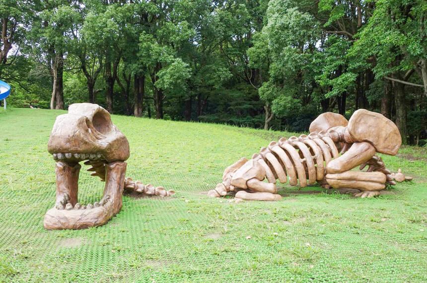 スケルトンザウルスの遊具