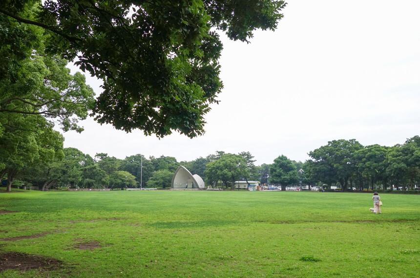 平塚市総合公園の芝生広場