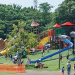 平塚市総合公園の大型遊具