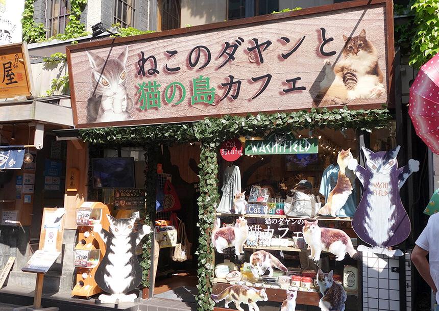 鎌倉小町通りの『ねこのダヤンと猫の島カフェ』