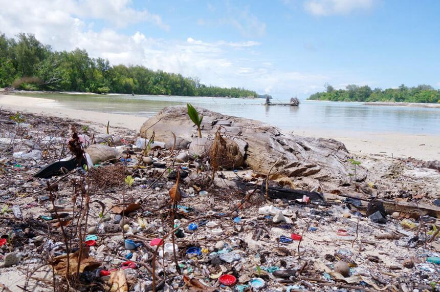 プラスチックごみだらけのパラオ・ペリリュー島の砂浜