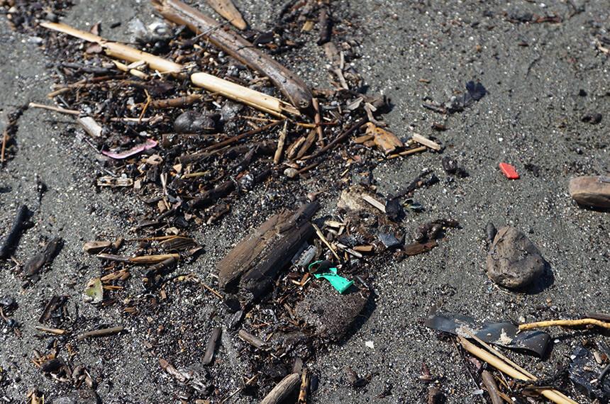ビーチクリーンで見つけたプラスチックゴミ